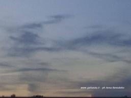 Albatros nel cielo della Versilia - ph Anna Benedetto