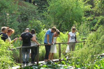 murabilia orto botanico Lucca